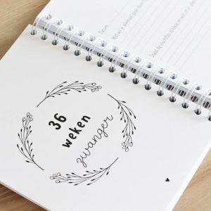 Invulboek zwangerschap FSHappiness
