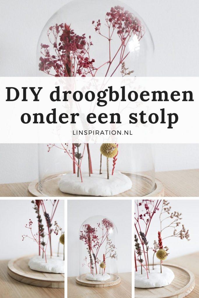 DIY: Droogbloemen onder een stolp